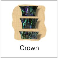 Crown Style Inlay for Musical Instruments